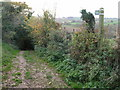 ST7162 : The Byway leaves the end of the green lane by James Ayres