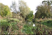 SP3365 : River Leam by Newbold Comyn Park by Robin Stott