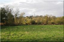 SP3365 : Flood-meadow, Newbold Comyn Park by Robin Stott