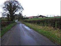 H5956 : Glenhoy Road, Keady by Kenneth  Allen