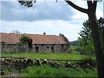 NU0440 : Old ruined buildings at West Kyloe Farm by Rodney Clark