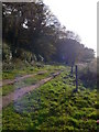 SJ4955 : Track to Church Farm, Harthill by Eirian Evans