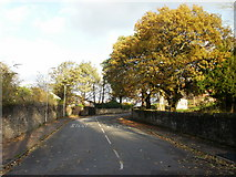 ST3288 : Woodland Park Road, Newport by Jaggery
