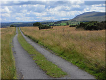 NY3141 : Road above Caldbeck by Andrew Smith