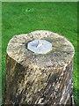 ST5707 : Sundial, St Osmonds Church by Maigheach-gheal