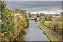 SJ8798 : Ashton Canal by Bob Jenkins