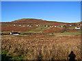 NG1749 : Across Glen Dale by Richard Dorrell