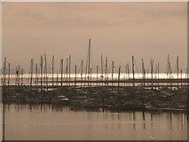 SZ3394 : Lymington: many masts in the marina by Chris Downer