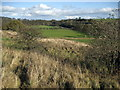 NZ1215 : Tees Valley near Ovington by Chris Heaton