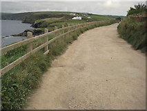 SW9981 : Coast path between Port Isaac and Port Gaverne by Philip Halling