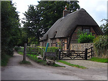 SU3180 : Cottage and byway, Upper Lambourn by Andrew Smith