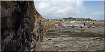 SW5130 : The Harbour, St Michaels Mount. by Tim Marshall