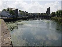 R3350 : Askeaton, River Deel by john salter