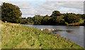 NY3971 : The River Esk at Kirkandrews by Walter Baxter