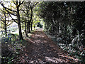 TF4503 : Byway from Maltmas Farm by Hugh Venables