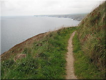 SX0181 : South West Coast Path by Philip Halling