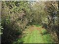 TF4502 : Coldham Bank by Hugh Venables