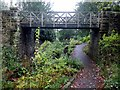 NZ2561 : Bridge over The Dene, Saltwell Park by Andrew Curtis