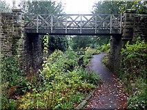 NZ2561 : Bridge over The Dene, Saltwell Park by Andrew Curtis