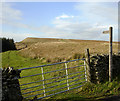 NY8610 : Footpath from cattle grid on Long Causeway by Andy Waddington