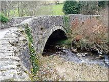 SH9434 : Bridge over the River Hirnant at Rhos-y-Gwaliau by Eirian Evans