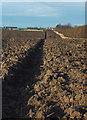 TA2235 : Flinton field by Paul Harrop