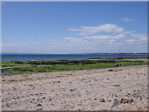 NO4202 : Sandy Beaches, Lower Largo by Astrid H