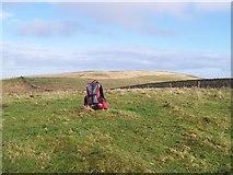 NU0013 : Summit of Lumsden Hill by Geoff Holland