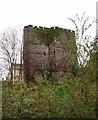 SO0428 : Brecon Castle by Eirian Evans