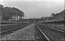 SO9596 : Derelict remains of Bilston Central Station looking towards Wolverhampton Low Level, 1978. by Tim Marshall