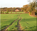 TG2001 : Meandering tractor track in field west of lane to Swardeston by Evelyn Simak