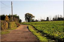 TL9568 : Track to Stowlangtoft Church by Bob Jones