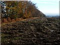 NS8384 : Ploughed field near Torwood Castle by Lairich Rig