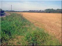SK4863 : Arable land near Newbound Lane by Trevor Rickard