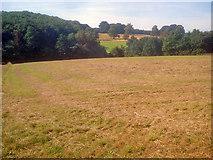SK4763 : Late hay crop north of Norwood by Trevor Rickard