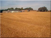 SK4764 : Barns at Hall Farm by Trevor Rickard