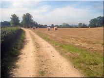 SK4665 : Farm track near Ault Hucknall by Trevor Rickard