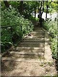 TQ3187 : Steps between Parkland Walk and Upper Tollington Park by Oxyman