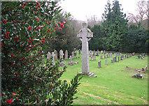 TM2384 : St Margaret's church - churchyard by Evelyn Simak
