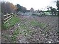 SP1618 : Muddy way by Michael Dibb