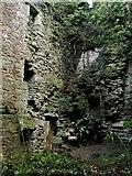 NS3578 : Kilmahew Castle - interior, NW corner by Lairich Rig