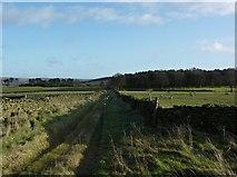 SK2077 : Track across Bretton Moor by Peter Barr