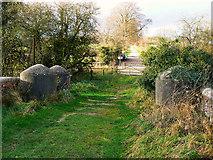 SU2763 : North from Bridge 98, near Crofton by Brian Robert Marshall