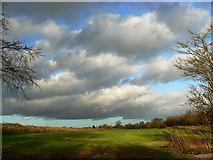 SU2763 : Field by the Crofton Road, near Crofton by Brian Robert Marshall