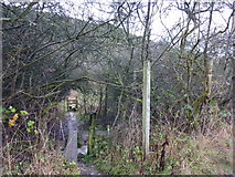 SK2274 : Footpaths leave Coombs Dale by Peter Barr