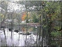 SE1407 : Former millpond for Swan Bank Mills, Cartworth (Holmfirth) by Humphrey Bolton