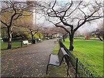 TQ2574 : Path, King George's Park by Derek Harper