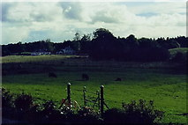 N1336 : Castledaly Manor - View from front steps by Joseph Mischyshyn