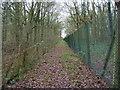 SP7115 : Footpath to Ashendon by Shaun Ferguson