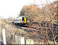 TG1704 : Diesel multiple unit 158 808 approaching Norwich by Evelyn Simak